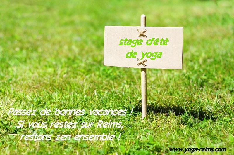stage d ete de yoga sur Reims par Pierre Dessolies